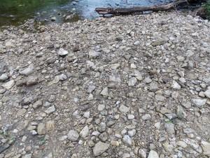 FP rocks in creek bed