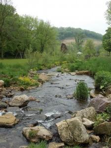 fp creek down