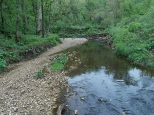 fp creek hunted