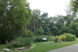 Butterfly Gardens!