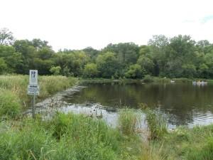Pond & Creek!