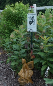 Multiple Monarch Waystations