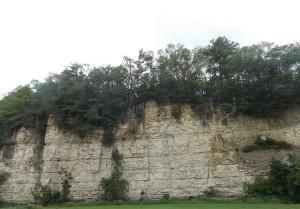 Masonic Park Rock Face