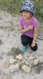 Lila's fossil finds.
