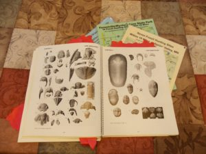 sloans trilobite pic page